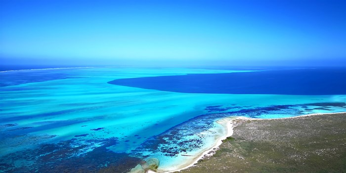 Image: Abrolhos